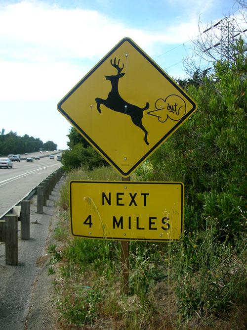 deerfarter607.jpg